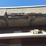 betonrot dakrand bestaande situatie 2